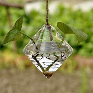 Macetas colgantes de cristal