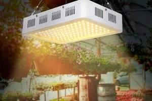 Todo Hogar Mejores Luz Led de Crecimiento para Plantas Interior